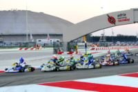 MORE THAN 200 ENTRANTS TO THE WSK CHAMPIONS CUP AT THE ADRIA KARTING RACEWAY. Gallery