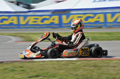 AFTER THE SECOND ROUND OF SARNO OF THE WSK SUPER MASTER SERIES ARDIGÒ (I – TONY KART-VORTEX KZ), POLLINI (I - CRG-TM KZ2), HILTBRAND (E – CRG-PARILLA OK), SHVETSOV (RUS – TONY KART-VORTEX OKJ) AND MINÌ (I – ENERGY-TM 60MINI) LEAD THE STANDINGS.