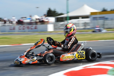 THE LEADERS OF THE WSK SUPER MASTER SERIES AFTER THE THIRD ROUND IN MURO LECCESE ARE ARDIG� (I � TONY KART-VORTEX KZ), POLLINI (I - CRG-TM KZ2), HILTBRAND (E � CRG-PARILLA OK), TAOUFIK (MA � FA KART-VORTEX OKJ) AND MIN� (I � ENERGY-TM 60MINI).