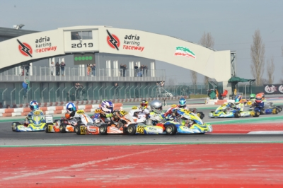 NELLE QUALIFICHE PER LA WSK CHAMPIONS CUP,  ALL'ADRIA KARTING RACEWAY EMERGONO THOMPSON (GB – FA-VORTEX OK), WHARTON (AUS FA-VORTEX OKJ) E IRFAN (GB – PAROLIN-TM 60MINI).