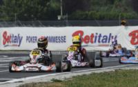 WSK MASTER SERIES IN CASTELLETTO (ITALY): HANLEY (ARTGP-TM KZ2) WINS THE FINAL 1. AFTER THE HEATS THE POLE POSITIONS ACHIEVED BY ILOTT (ZANARDI-TM) IN KF, NORRIS (FA KART-VORTEX) AND LORANDI (TONY-PARILLA) IN KFJ, LÉGERET (TONY-LKE) IN 60 MINI.