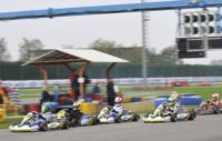 TODAY'S POLE SITTERS OF THE WSK FINAL CUP: TORSELLINI (I - ART GP-TM), ILOTT (GB � ZANARDI-PARILLA), NORRIS (GB � FA-VORTEX) AND MIZEVYCH (RO � TONY KART-LKE). TOMORROW, IN CASTELLETTO DI BRANDUZZO (I) THE QUALIFYING HEATS.