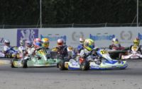 IN CASTELLETTO AT THE WSK SUPER MASTER SERIES THE POLE-SITTERS OF THE PREFINALS ARE KOZLINSKI (INTREPID-TM) AND ARDIG� (TONY KART-VORTEX) IN KZ2, NORRIS (FA KART-VORTEX) AND LORANDI (TONY KART-TM) IN KF.