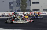 THE POLE-SITTERS OF THE PREFINALS OF THE WSK FINAL CUP ARE ARDIG� (I - TONY-VORTEX KZ2), NIELSEN (DK � KOSMIC-VORTEX KF), VARTANYAN (RUS � TONY-VORTEX KFJ) AND BOGDANOV (TONY-LKE 60MINI).