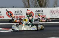 QUALIFYING OVER AT THE WSK GOLD CUP HOSTED BY THE ADRIA KARTING RACEWAY. POLE-POSITIONS FOR THONON (B � PRAGA-PARILLA KZ2), NIELSEN (I - TONY KART-VORTEX KF), LUNDGAARD (DK - TONY KART-VORTEX KFJ) AND HAUGER (N � CRG-LKE 60MINI).