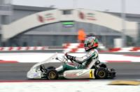 AT THE WSK SUPER MASTER SERIES IN ADRIA (ROVIGO - I) THE TOP DRIVERS ARE ARDIG� (I - TONY KART-VORTEX KZ2), NIELSEN (DK - TONY KART-VORTEX KF) AND MICHELOTTO (I � ENERGY-IAME 60MINI). DRUGOVICH (BR � KOSMIC-VORTEX) PULLS AWAY IN KFJ.