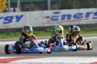 AT THE WSK FINAL CUP AT THE ADRIA KARTING RACEWAY THE POLE SITTERS ARE ARDIGÒ (I – TONY KART-VORTEX KZ2), NIELSEN (DK – TONY KART-VORTEX KF) AND BLOMQVIST (S – TONY KART-VORTEX KFJ). THE BEST IN 60MINI ARE MARSEGLIA AND MICHELOTTO. Gallery